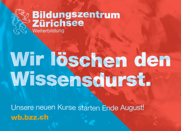 BZZ neuer Auftritt 2016