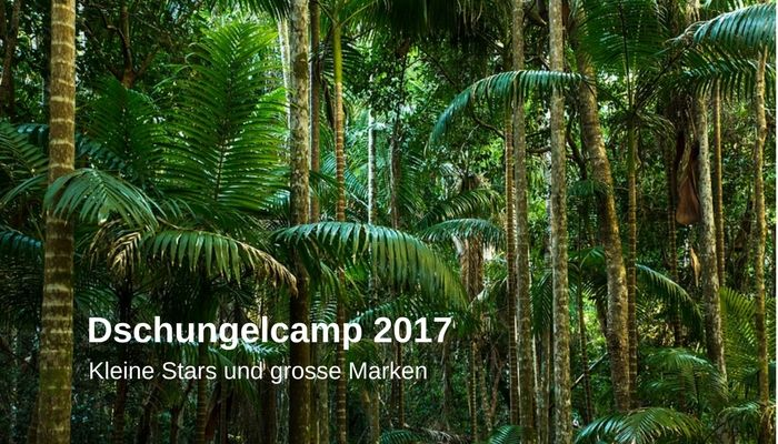 Dschungelcamp 2017 Marketing